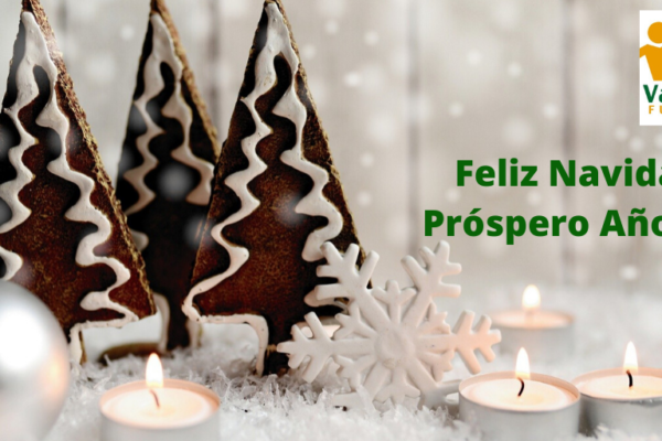 Feliz Navidad y Feliz Año Nuevo – Zorionak eta Urte Berri On (video)